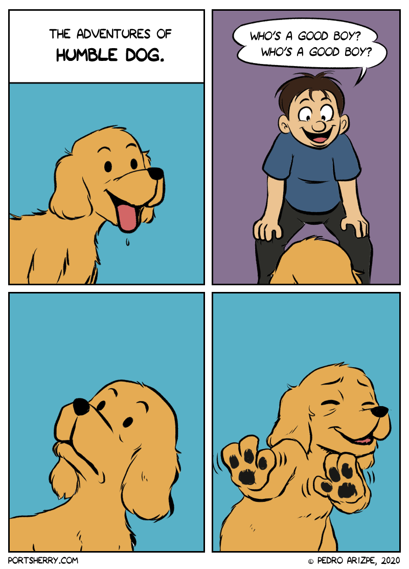 The adventures of humble dog